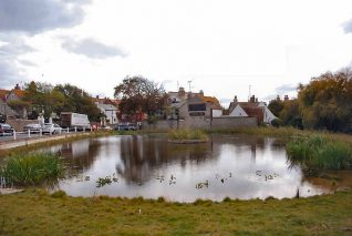 Rottingdean pond   Photo by Tony Mould