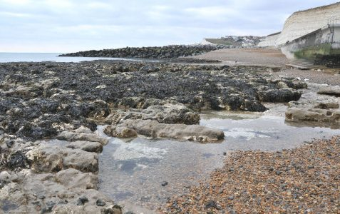 Rock pools and the seafront