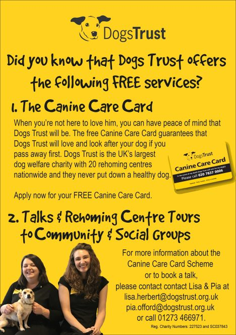 The Dogs Trust   The Dogs Trust