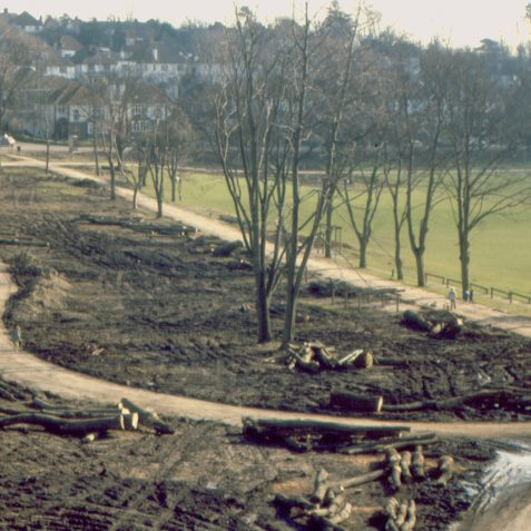 A view looking east of the total destruction of the centre of the park | Photo by K W Barrington