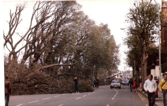 Lewes Road looking towards the Level the day after the great storm of October 1987 | Photographed by Stuart Joseph