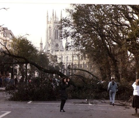 After the storm 1987 | My Brighton and Hove