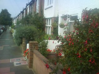 Looking up Bennett Road | Photo courtesy of Kemp Town gardening club