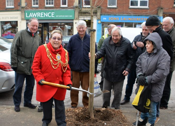 Hove Civic Society tree planting | ©Photo by Tony Mould