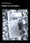 Pebble on The Beach, written by Tony Diamond | Reproduced with permission from QueenSpark Books