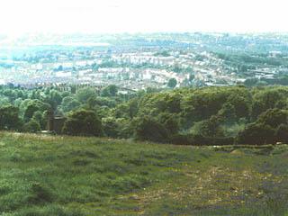 Roundhill Crescent