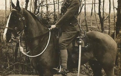 Frank T Andrews: Sussex Yeomanry