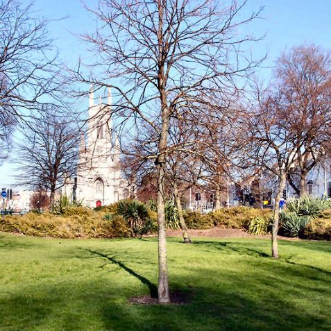View of the upper part of the Northern enclosure of Victoria Gardens. | Photo by Tony Mould