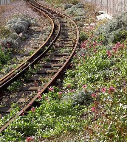 Volks railway track | Julia Powell