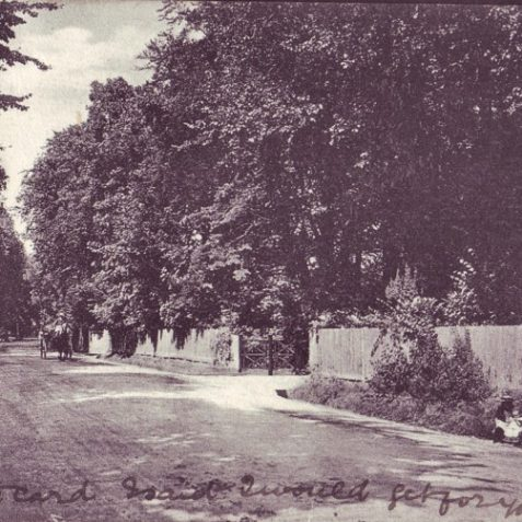 London Road at Withdean c.1900. | From the private collection of Tony Drury