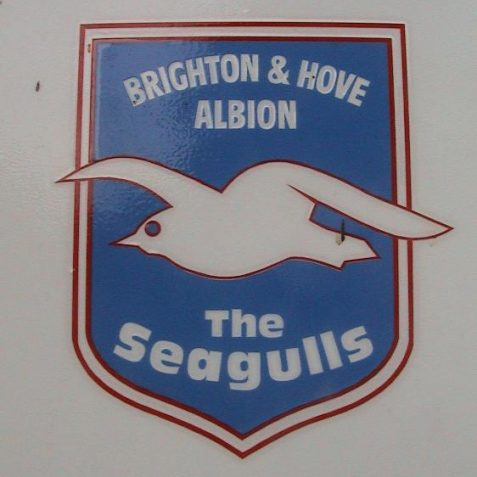 Brighton and Hove Albion - The Seagulls | Photo by David Lockie