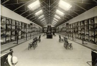 Booth Museum, Date unknown: Photograph of the interior of the Booth Museum. | Image reproduced with kind permission from Brighton and Hove in Pictures by Brighton and Hove City Council