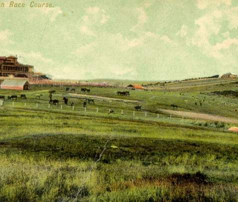 Brighton Race Course, c. 1905: This view of the Race Course shows horses and sheep in fields adjacent to the course itself. The race stand was built in 1851 and substantially developed in 1866 and 1871 when southern and northern wings were added. To the right Belle Vue Cottages can be seen as can the Race Hill Mill. This white post mill was moved to the site in from Albion Hill between December 1861 and January 1862. It collapsed on 16 May 1913 after several years of disuse. | Image reproduced with kind permission from Brighton and Hove in Pictures by Brighton and Hove City Council